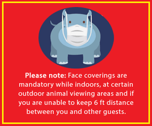 Please note: Face coverings are mandatory while indoors, at certain outdoor animal viewing areas and if you are unable to keep 6 ft distance between you and other guests.