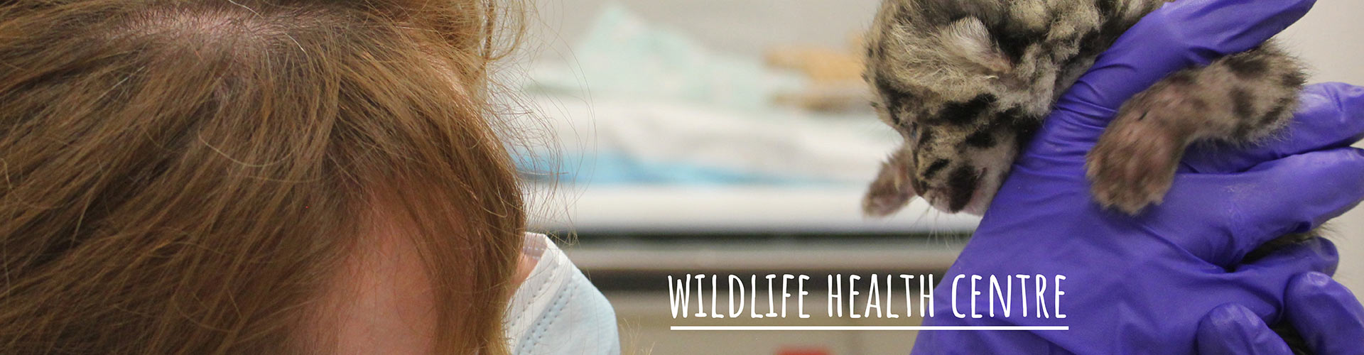 Wild Life Health Centre Science & Research Partners