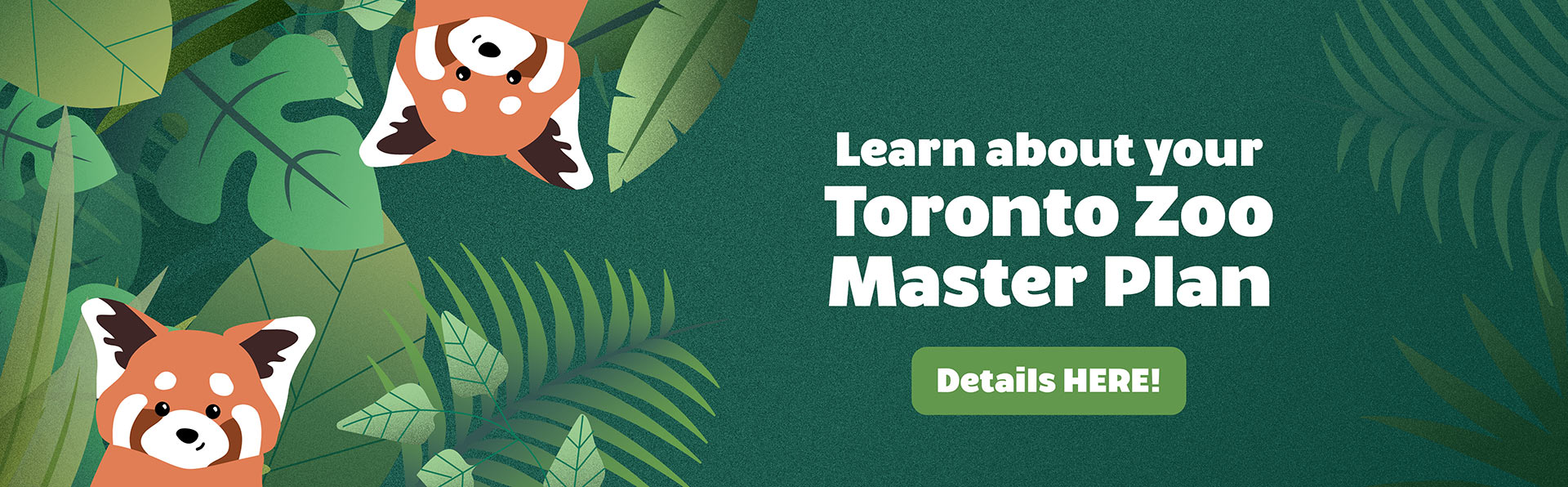 Learn about your Toronto Zoo Master Plan