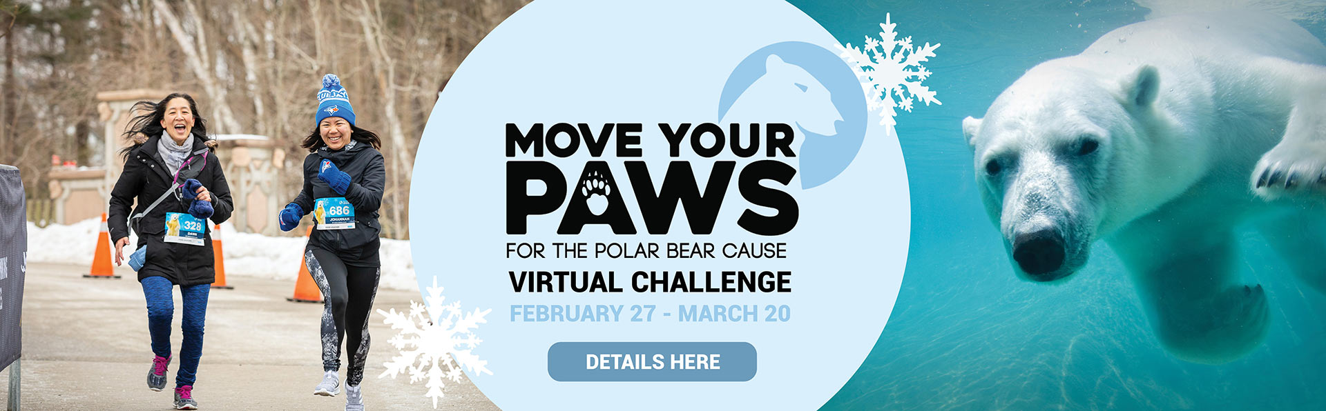 Move you paws for the polar bear cause virtual challenge