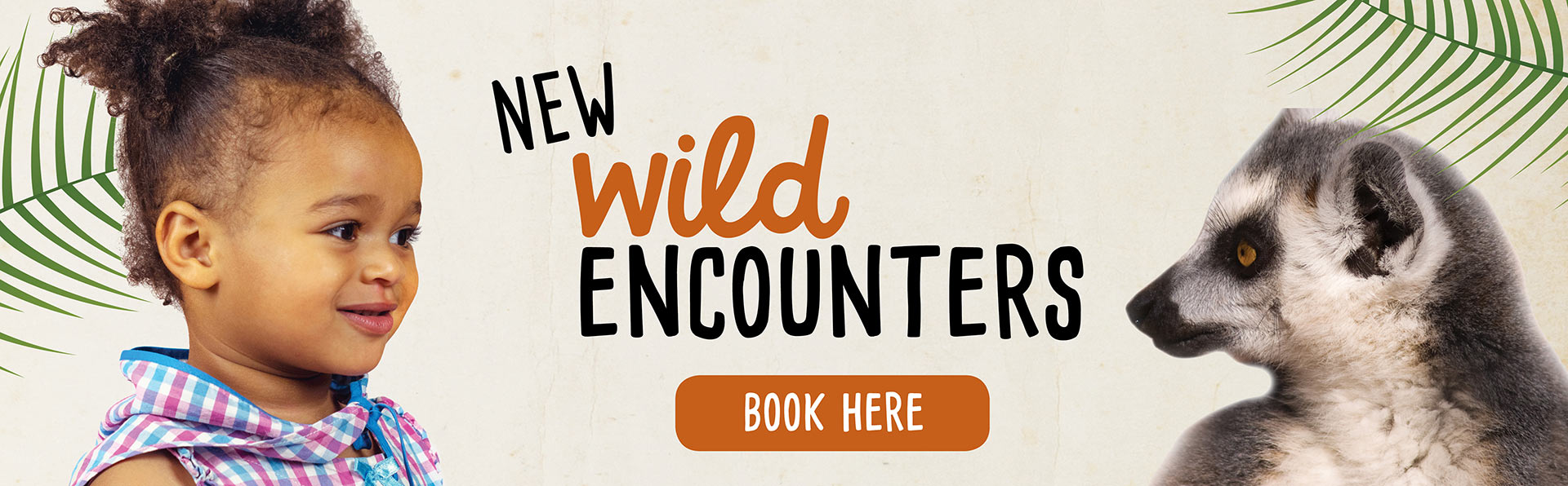 New Wild Encounters