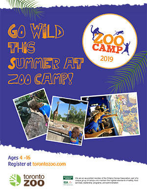 Button: links to Zoo Camp brochure