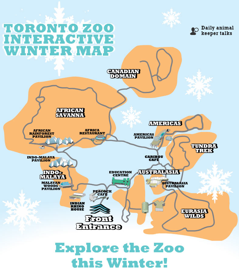Toronto Zoo Winter