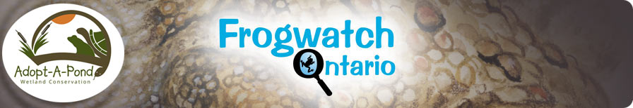 Frogwatch Ontario
