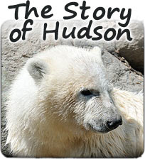 The Story of Hudson