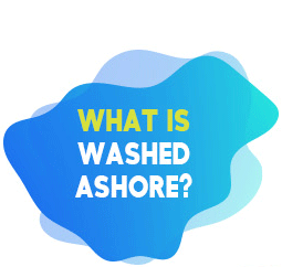 What Is Washed Ashore